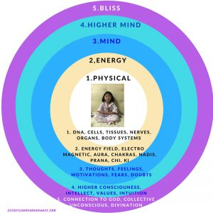 The 5 Dimensions of the Body